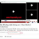 Hướng dẫn hiển thị tên tác giả bài viết trong WordPress lên facebook